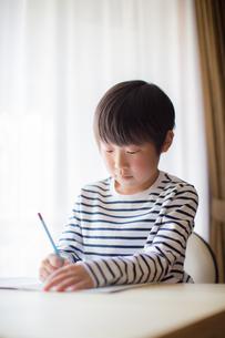 勉強をする少年の写真素材 [FYI01164437]