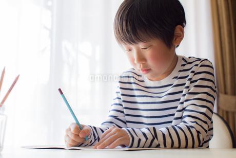 勉強をする少年の写真素材 [FYI01164438]