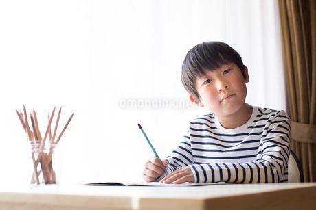 勉強をする少年の写真素材 [FYI01164439]
