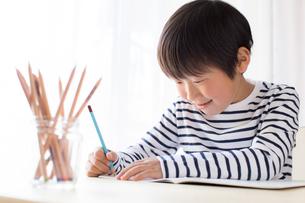 勉強をする少年の写真素材 [FYI01164440]