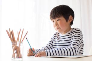勉強をする少年の写真素材 [FYI01164441]