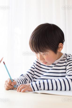 勉強をする少年の写真素材 [FYI01164442]