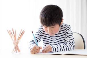 勉強をする少年の写真素材 [FYI01164447]