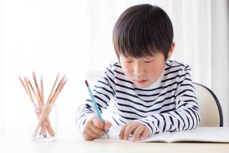 勉強をする少年の写真素材 [FYI01164448]