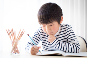 勉強をする少年の写真素材 [FYI01164452]