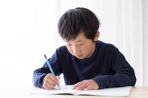 勉強をする少年の写真素材 [FYI01164456]