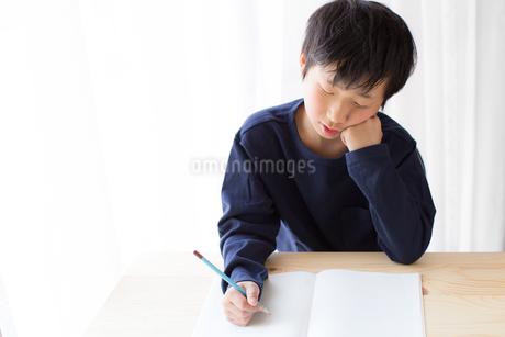 勉強をする少年の写真素材 [FYI01164463]