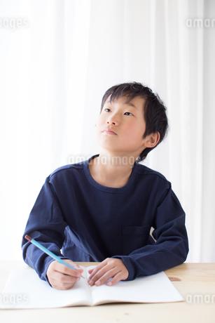 勉強をする少年の写真素材 [FYI01164465]