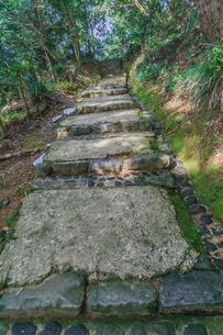 秋の宇和島城の風景の写真素材 [FYI01164604]