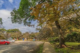 秋の宇和島城の風景の写真素材 [FYI01164610]