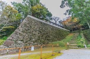 秋の宇和島城の風景の写真素材 [FYI01164613]