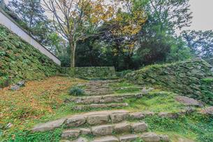 秋の宇和島城の風景の写真素材 [FYI01164614]