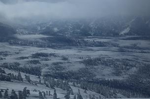八甲田の樹氷の写真素材 [FYI01165337]