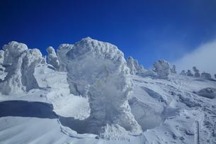 八甲田の樹氷の写真素材 [FYI01165343]