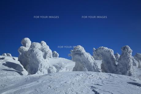 八甲田の樹氷の写真素材 [FYI01165344]