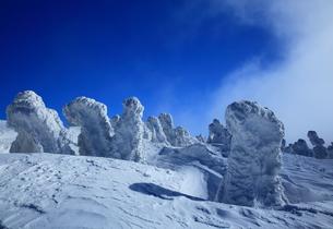 八甲田の樹氷の写真素材 [FYI01165346]