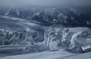 八甲田の樹氷の写真素材 [FYI01165387]