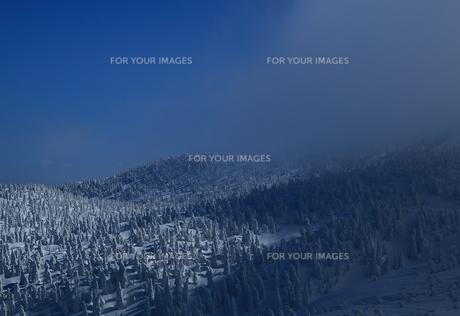 八甲田の樹氷の写真素材 [FYI01165388]