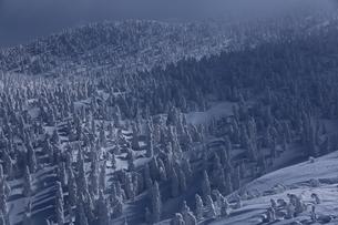 八甲田の樹氷の写真素材 [FYI01165390]