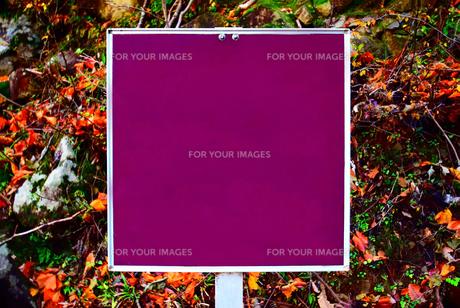 京都大江山の看板の写真素材 [FYI01165557]