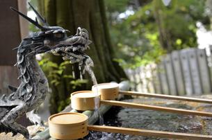 生駒山の手水舎の写真素材 [FYI01165575]