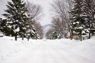 雪道の写真素材 [FYI01166226]