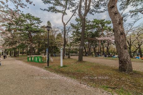 春の久保田城の本丸跡の風景の写真素材 [FYI01166518]