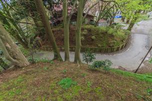春の久保田城の風景の写真素材 [FYI01166529]