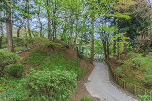 春の久保田城の風景の写真素材 [FYI01166531]