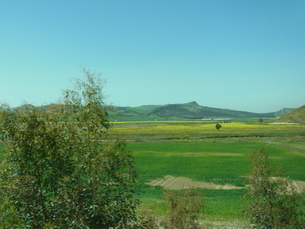 イタリア 田園風景の写真素材 [FYI01166554]