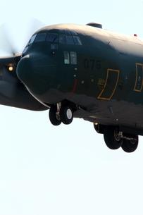 小牧基地 C130輸送機の写真素材 [FYI01166787]