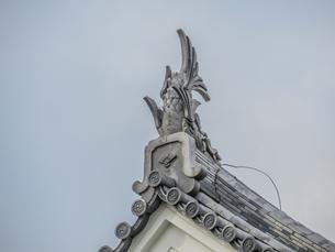 春の久保田城の御隅櫓の風景の写真素材 [FYI01166861]
