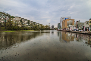 春の久保田城の大手門の堀の風景の写真素材 [FYI01166934]
