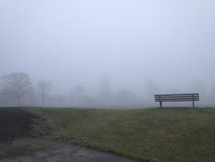 朝靄 ベンチの写真素材 [FYI01167096]