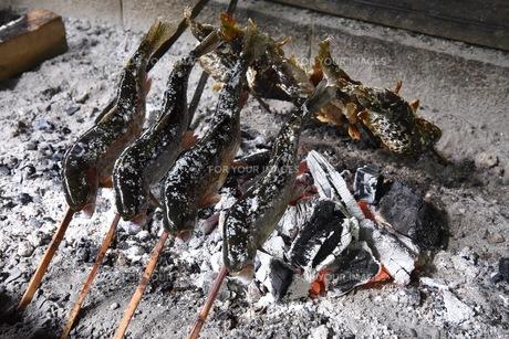 焼き魚の写真素材 [FYI01167101]