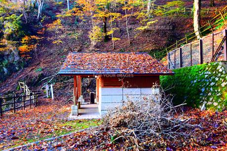 京都大江山のトイレの写真素材 [FYI01167149]