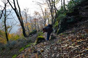 京都大江山の山道の写真家の写真素材 [FYI01167152]