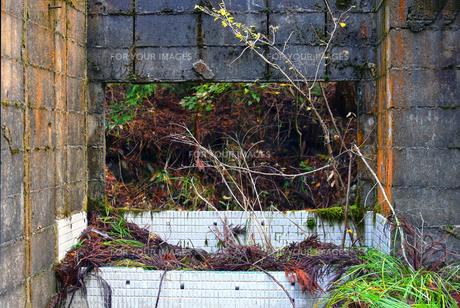 京都大江山の廃墟の写真素材 [FYI01167157]