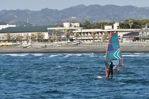 館山湾のウィンドサーフィンの写真素材 [FYI01167182]
