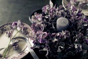 アンティークのお皿とスイートピーのテーブルリースの写真素材 [FYI01167345]