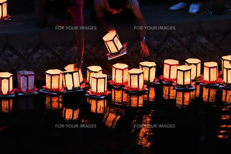 灯篭流しの写真素材 [FYI01167379]