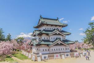 移転後の弘前城の春の天守の風景の写真素材 [FYI01167569]