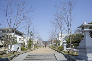 日本の街の写真素材 [FYI01167670]