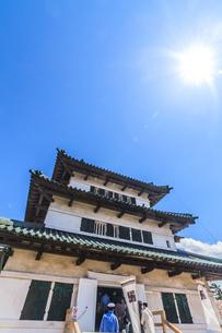春の移転した弘前城の天守の風景の写真素材 [FYI01167728]