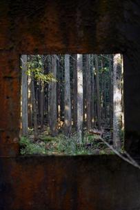 京都大江山の廃墟から覗く世界の写真素材 [FYI01168073]