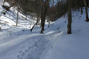 雪山の写真素材 [FYI01168333]