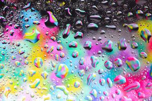 カラフルな水滴の写真素材 [FYI01168334]