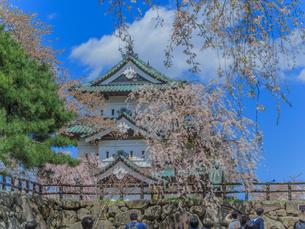 春の移転した弘前城の天守の風景の写真素材 [FYI01168348]