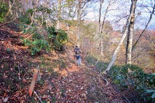 京都大江山の登山人の写真素材 [FYI01168372]