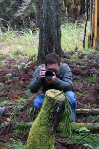 京都大江山のカメラマンの写真素材 [FYI01168376]